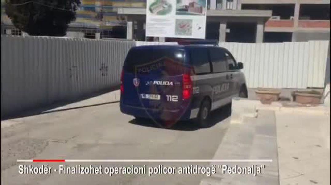 Shkodër, kapet me 900 doza shpërndarësi i drogës