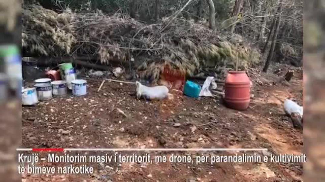 Krujë-Kontroll masiv i territorit për parandalimin e kultivimit të bimëve narkotike.