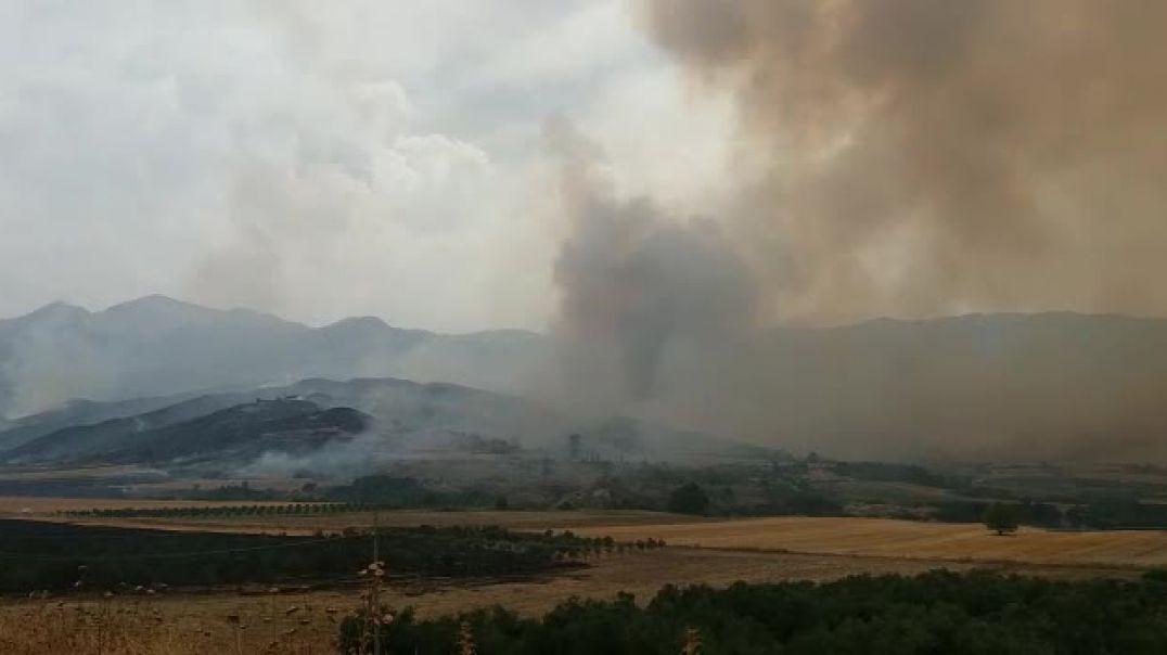 Zjarri përpin fushat e mbjella në Gjorm të Vlorës